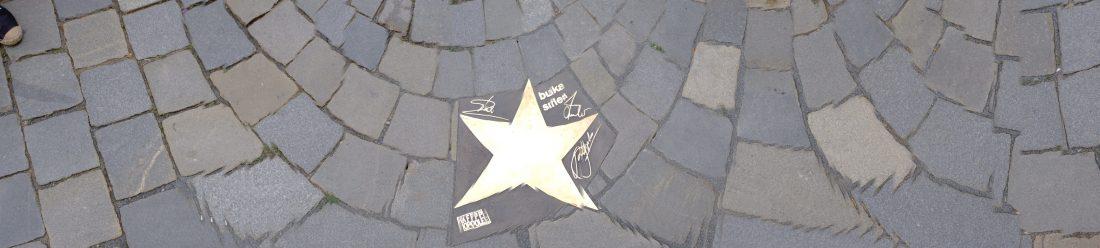 Odsloniecie_gwiazdy_24_foto_JPCH