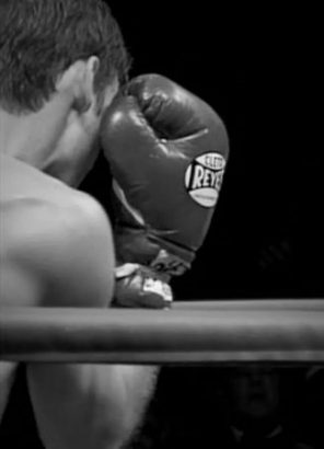 boxer_3